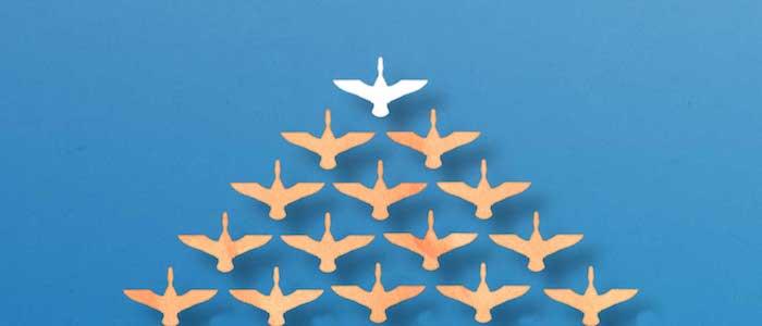 leadership-bird-formation